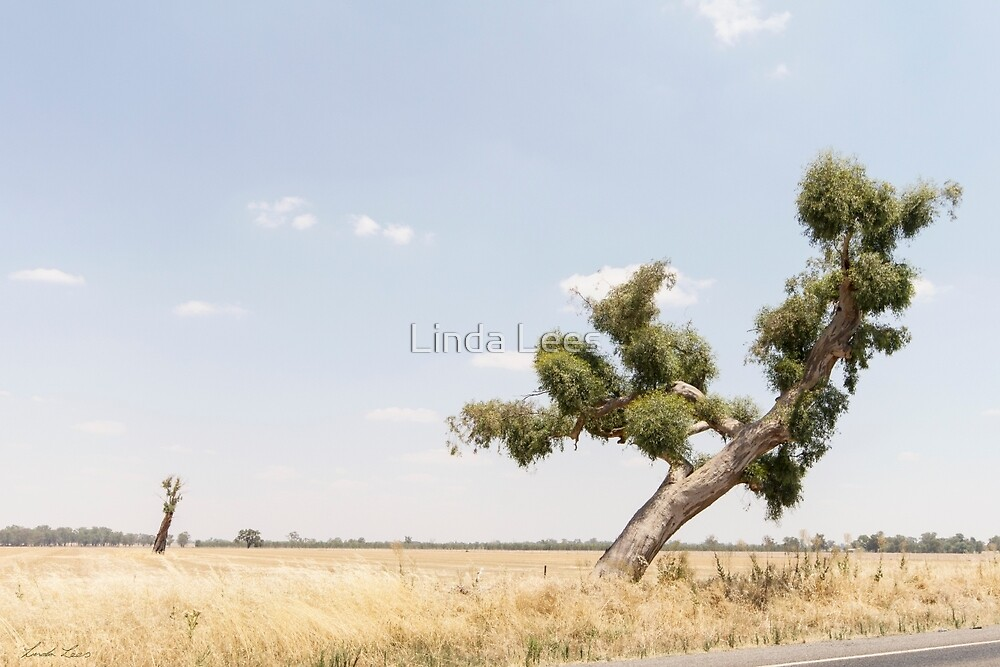 Recovery by Linda Lees