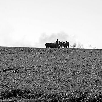 Tending To The Fields by dmarciniszyn