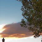 Cloudy Sunset by Jenni Greene