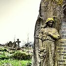 Angel  by savosave