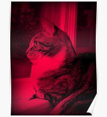 Dark Strawberry Kitty Poster