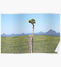glasshouse mountains queensland australia Poster