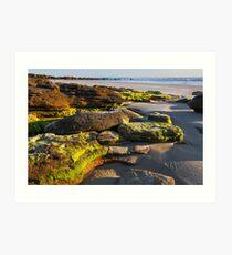 Beach Rocks at Daybreak Art Print