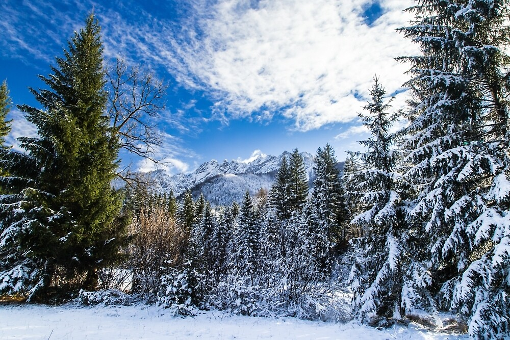 First snow at the mountain by zakaz86