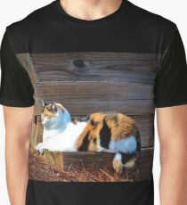 Calico Cat On The Steps Graphic T-Shirt