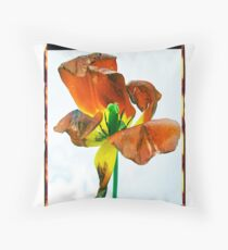 Polacolor Floral 7, Reproduction Throw Pillow