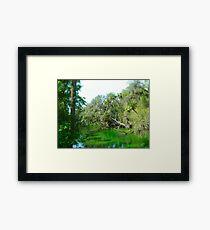 Wildlife State Park Framed Print
