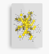 Science of honey and bees Metal Print