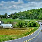 Amish Countryside by Dyle Warren
