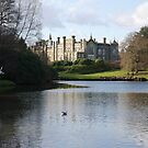 Sheffield Park. by victor55