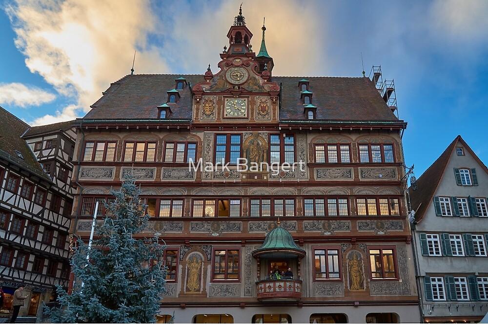 Tübingen town hall by Mark Bangert