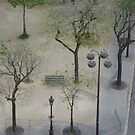 Looking Down From Arch de Triumph by Randy Sprout