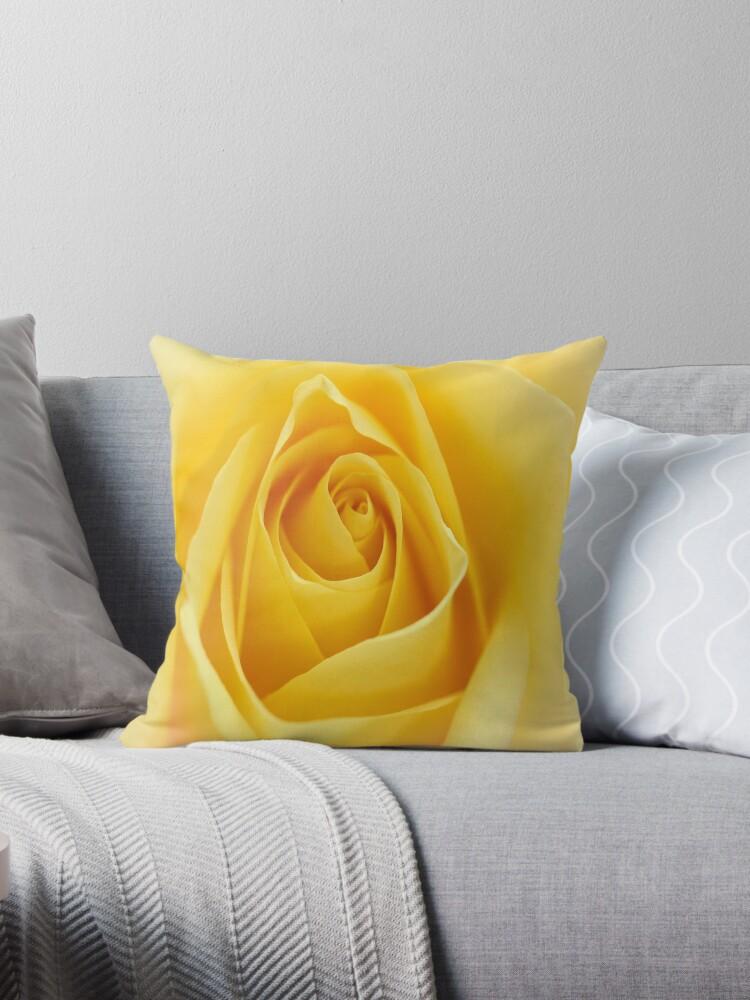 Macro Rose Bloom Flower by Elizabeth Thomas