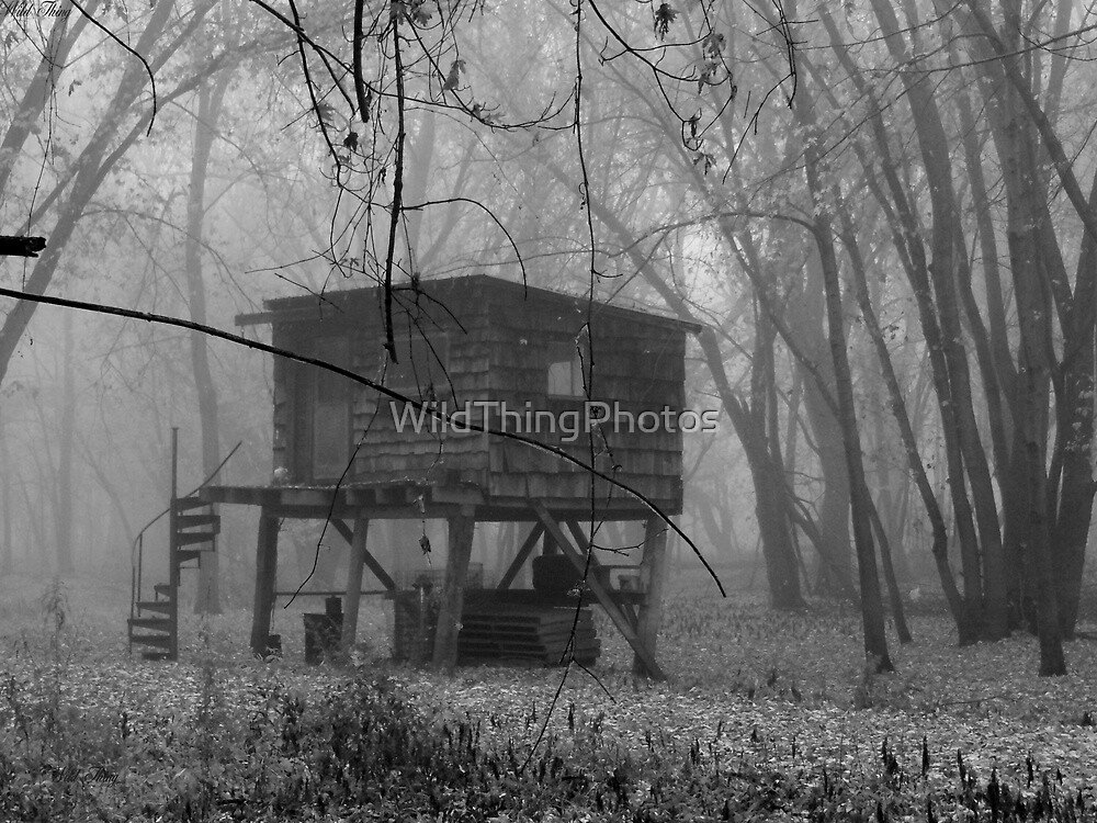 Swamp Witch's Dwelling by WildThingPhotos