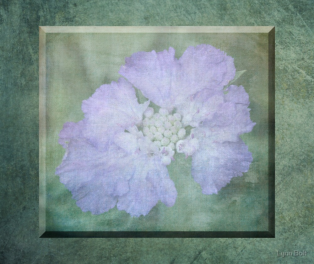 Misty Mauve 3D Flower by Lynn Bolt