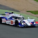 Toyota Racing No 8 by Willie Jackson