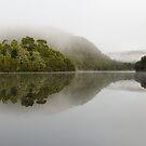 Morning mist on the Pieman by Glenda Williams