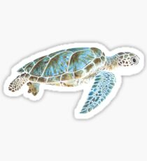 Sea turtle underwater Sticker