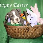 Am I An Easter Bunny ? by Ginny York