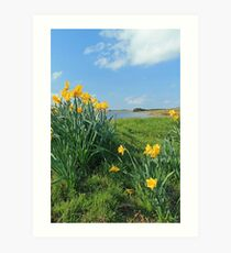 Spring at Threpmuir in the Pentlands, Edinburgh Art Print
