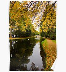 Salmon ponds tasmania , Yellow trees  Poster
