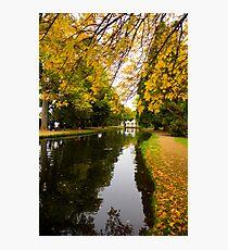 Salmon ponds tasmania , Yellow trees  Photographic Print