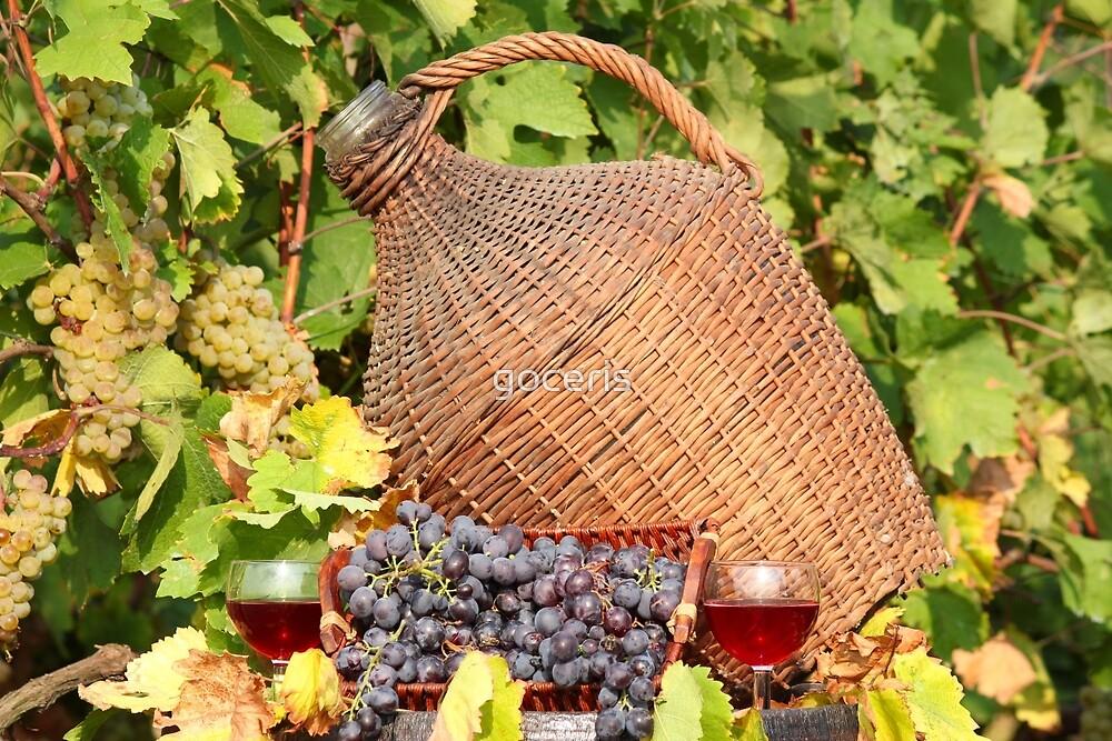 red wine autumn scene by goceris