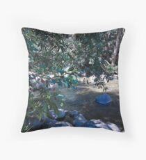Gloucester river gloucester tops Throw Pillow