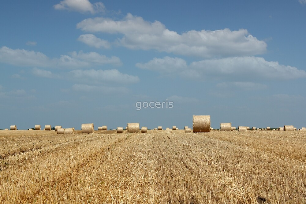 agriculture field with straw bale by goceris