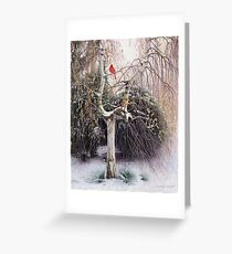 Winter Veil - Cardinal Pair Greeting Card