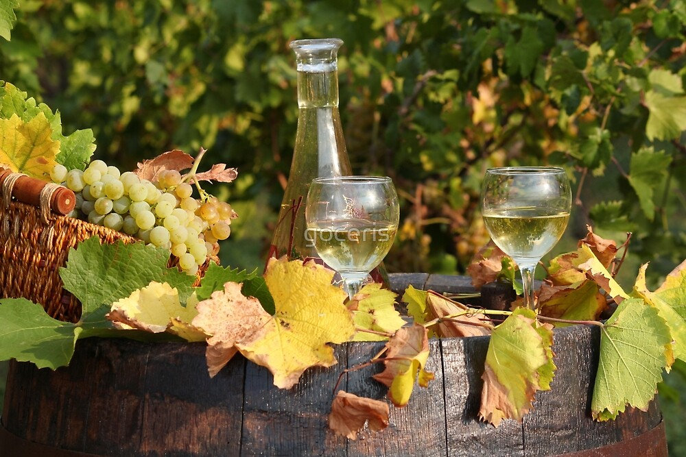 white wine and grape by goceris