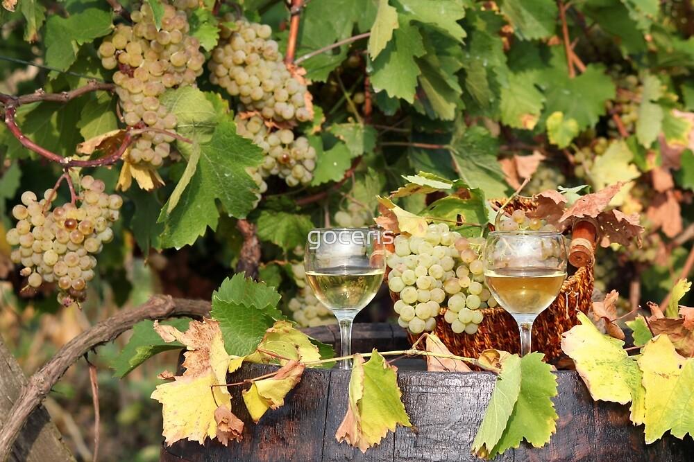 white grape and wine autumn scene by goceris