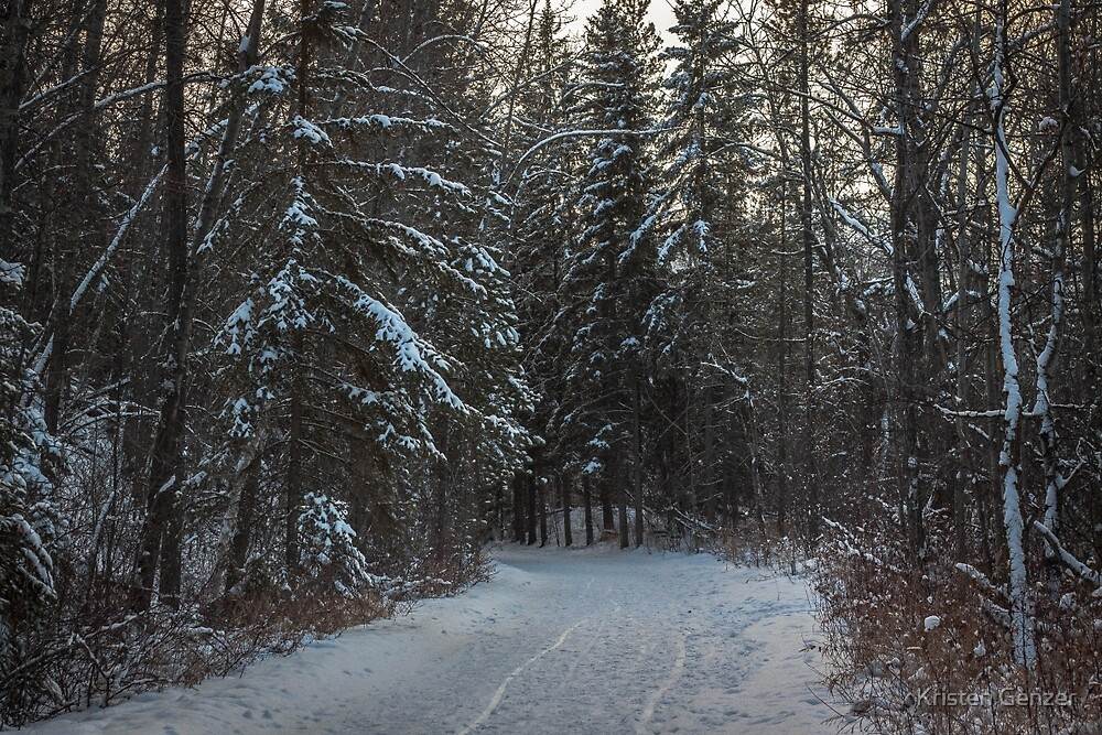 Snowy Path by Kristen Genzer