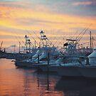 Port Aransas Sunset by RayDevlin