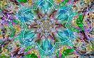 Pastel Star Kaleidoscope  by Tori Snow
