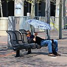 Sunday Snooze - Cincinnati 2014 by Tony Wilder
