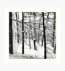 Winter Wanderlust Art Print