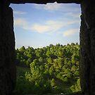 La Couscouillette View by triciamary