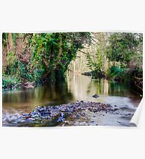 Rivelin Tranquility Poster
