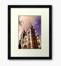 National History Museum- London Framed Print