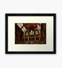 National History Museum II- London Framed Print