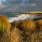 Storm Bay - Phillip Island by Timo Balk