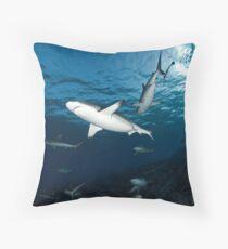 Sharky Time Throw Pillow