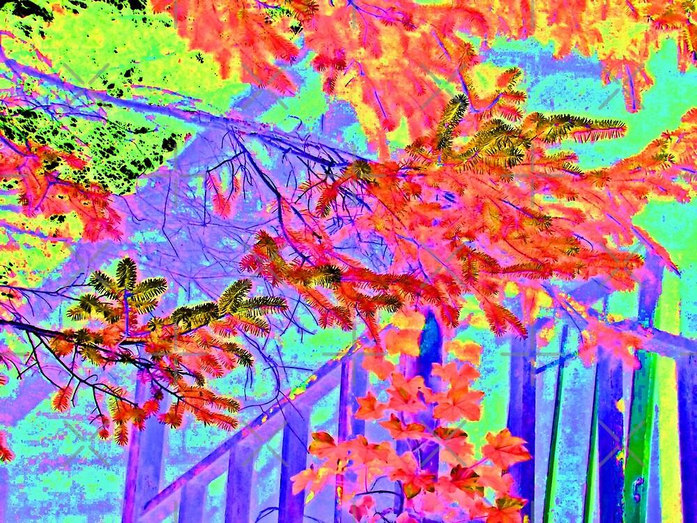 Vine Cover House Nahalem Oregon by diane  addis