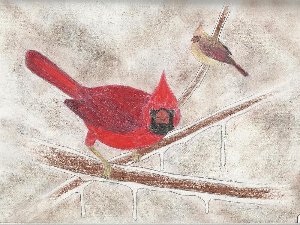 Cardinals by benjfamilyart
