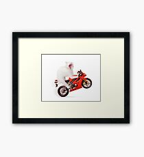 White cat riding motorcycle art photo print Framed Print