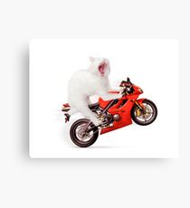 White cat riding motorcycle art photo print Canvas Print