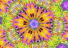 Pansy Kaleidoscope in HDR by Tori Snow