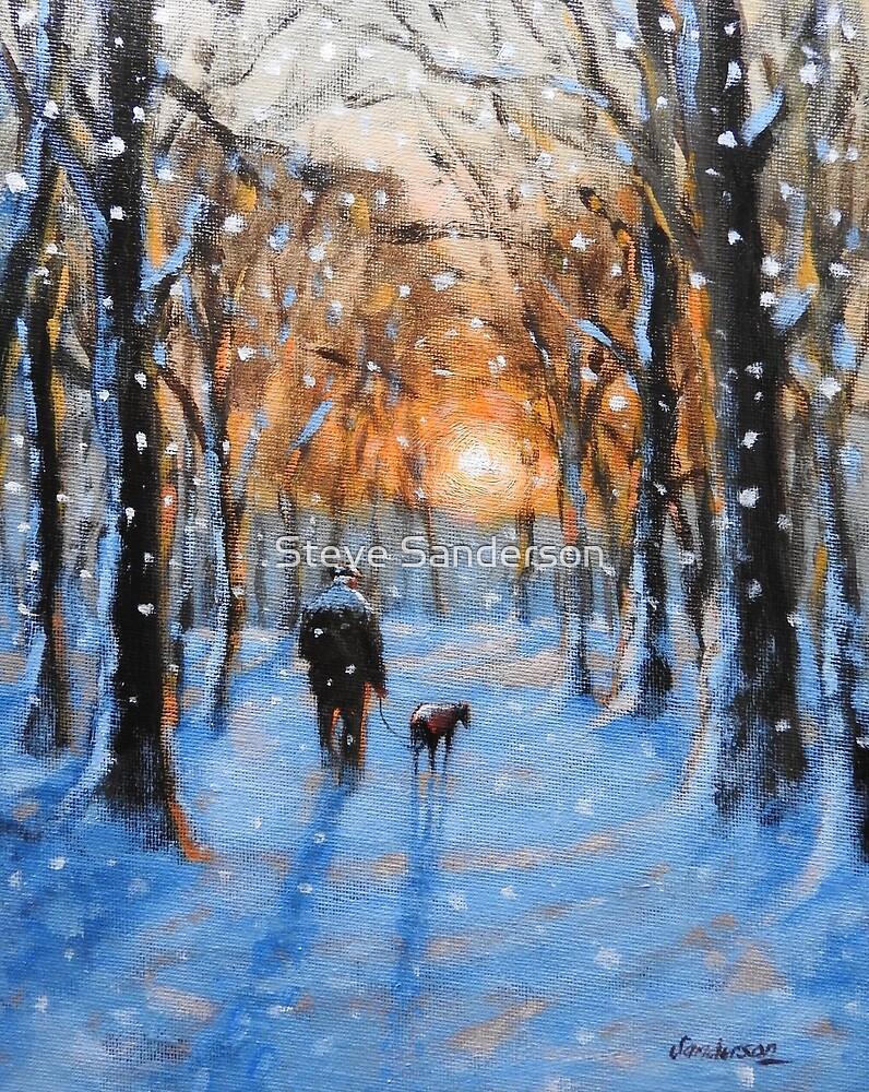 A Winters walk by Steve Sanderson