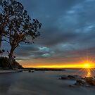 HDR - Two Tree Point, Adventure Bay, Bruny Island, Tasmania, Australia. by PC1134